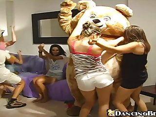 Tanzender Bär fickt Cougar